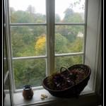 Piedritas en la ventana poesía