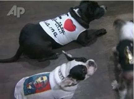 Obama presente en la moda en los perros en París
