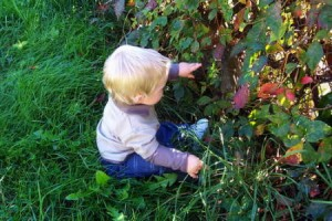 Sobre Niños Frases Célebres