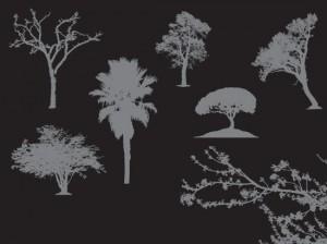 Siluetas de árboles en vectores Gratis
