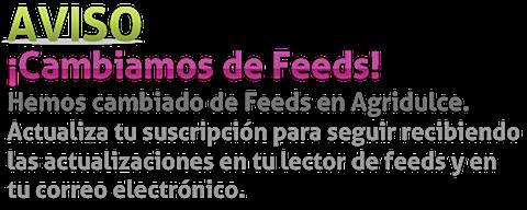 Cambio de Feeds