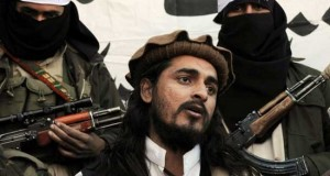 Zulfiqar Mehsud nuevo líder Talibán