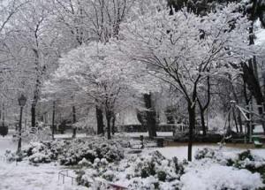 """""""Jardín de Invierno"""" Poemas"""