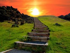Sobre la esperanza - Frases Célebres