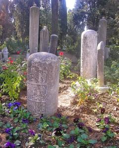 Sobre la muerte - Frases Célebres