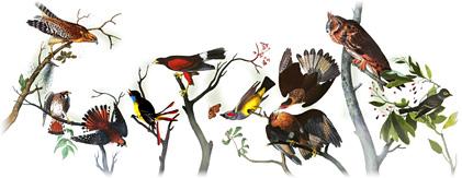 Google recordando a John James Audubon a 226 años de su nacimiento