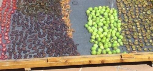 deshidratar fruta al aire libre