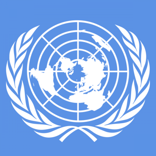 Onu_derechos humanos